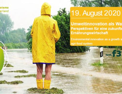 """Online-Veranstaltung """"Umweltinnovation als Wachstumsstrategie"""""""